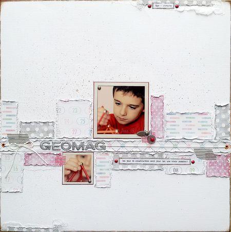 Jess-CC12-Geomag